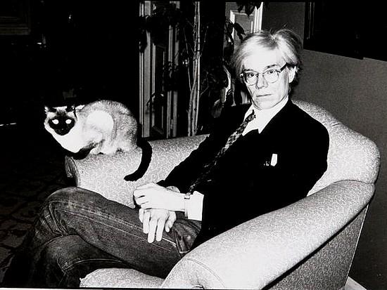 cinema-et-chanson-andy-warhol-en-1977-avec-son-chat